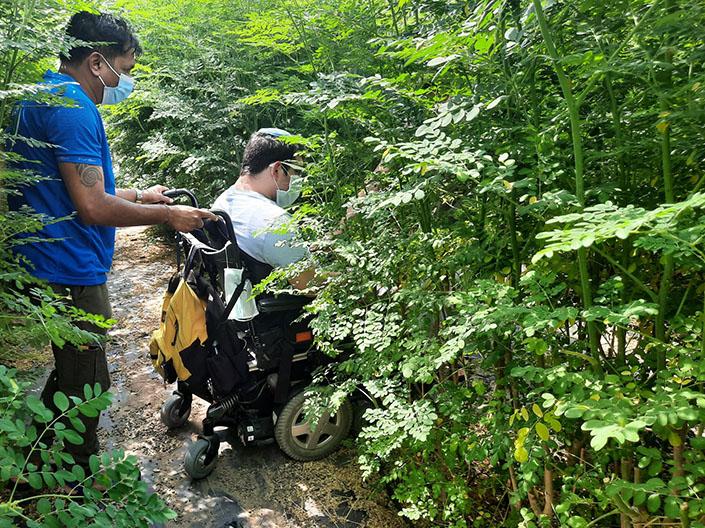 איש על כיסא גלגלים נהנה בין עצי המורינגה במבוך של יערות מורינגה