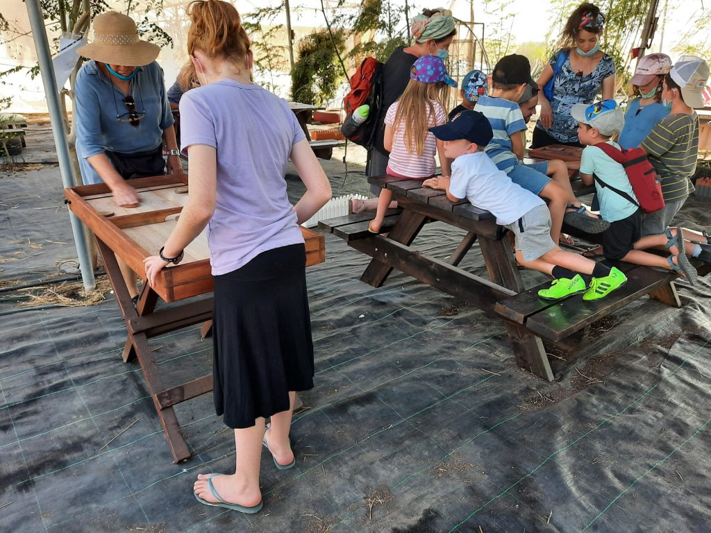 ילדים משחקים בפאזלים ונהנים במבוכי המורינגה של יערות מורינגה
