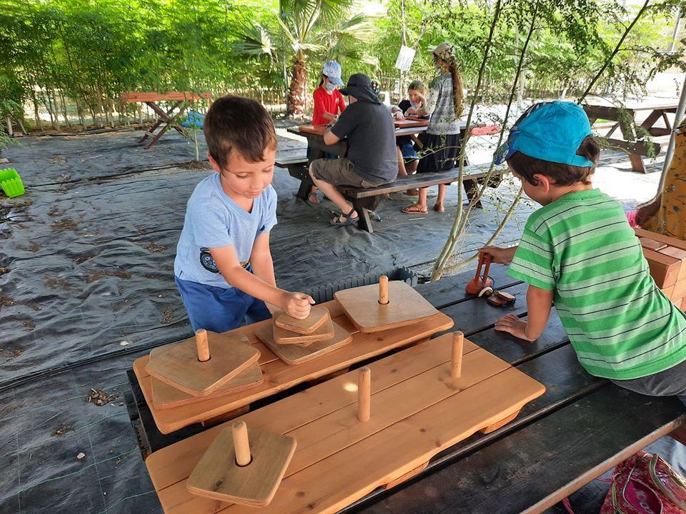 ילד משחק בפאזל ונהנים במבוכי המורינגה של יערות מורינגה